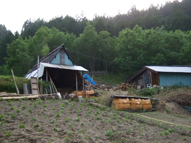愛媛県上浮穴郡久万高原町大川 旧 美川村大川 炭焼がまの風景
