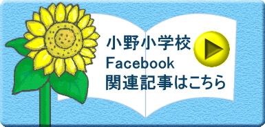 小野小学校Facebookヒマワリ関連記事はこちら
