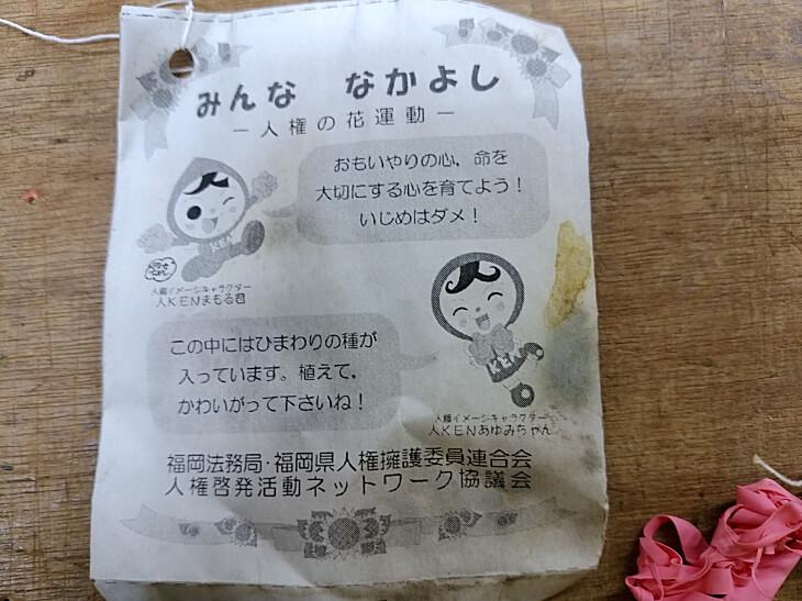 みんななかよし 人権の花運動 福岡県小野小学校からの風船ヒマワリ