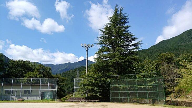 柳谷小学校 風船ヒマワリが咲いている景色