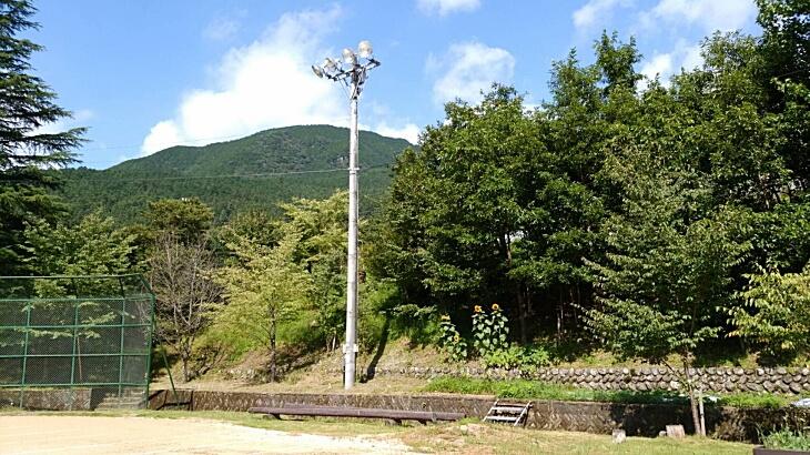 柳谷小学校風船ヒマワリの風景